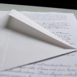 surat terbuka thevocket
