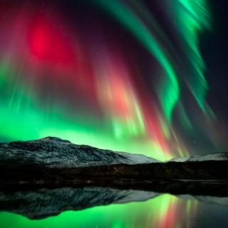 aurora11