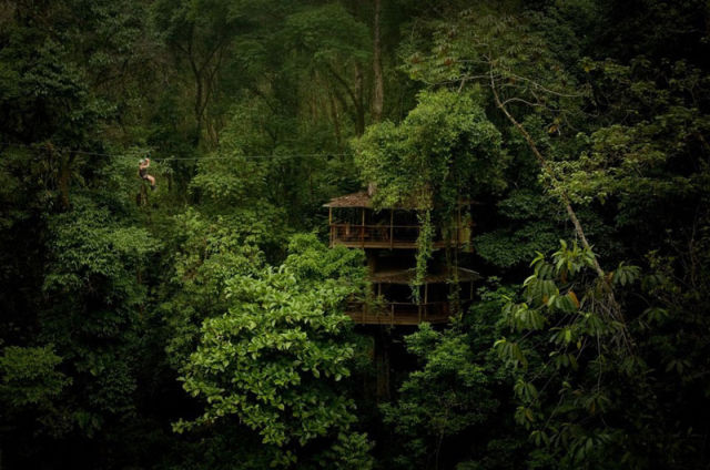 experience_treehouse_living_in_forested_costa_rica_resort_640_01