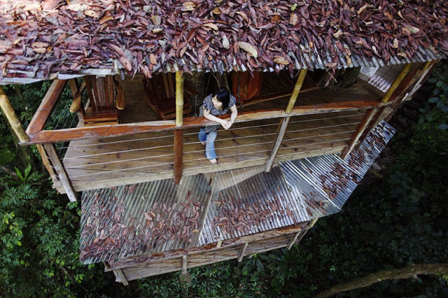 experience_treehouse_living_in_forested_costa_rica_resort_640_06