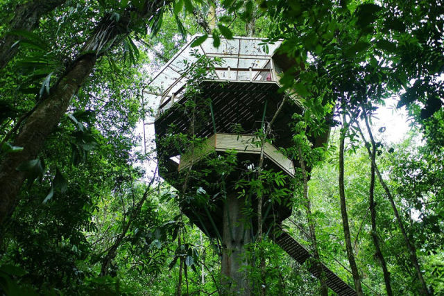experience_treehouse_living_in_forested_costa_rica_resort_640_08