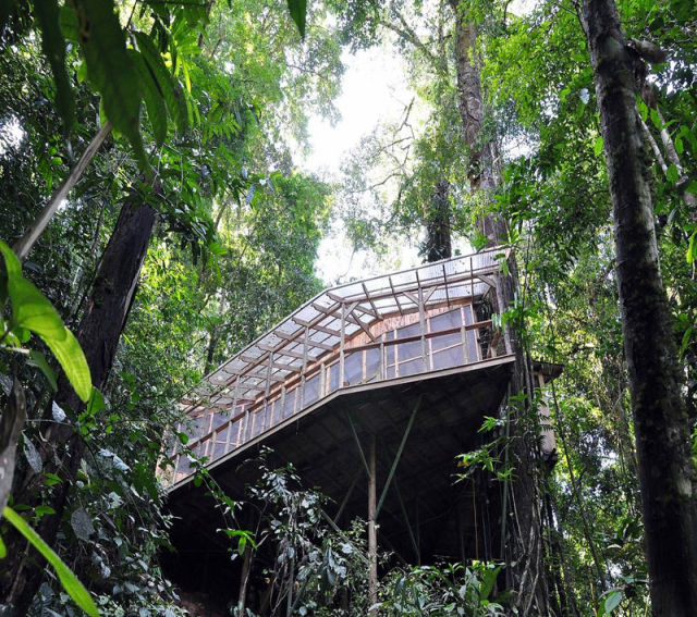 experience_treehouse_living_in_forested_costa_rica_resort_640_15