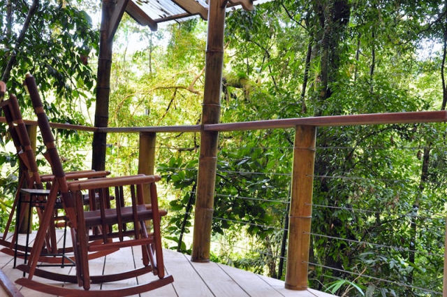 experience_treehouse_living_in_forested_costa_rica_resort_640_16