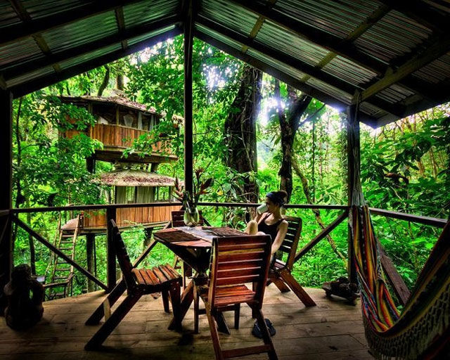 experience_treehouse_living_in_forested_costa_rica_resort_640_17