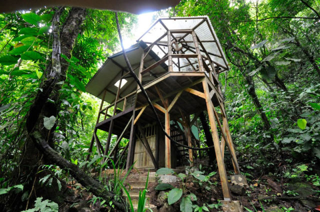 experience_treehouse_living_in_forested_costa_rica_resort_640_20