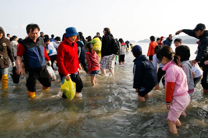 jindo-festival-korea-selatan-5