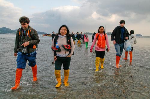 jindo-festival-korea-selatan-9