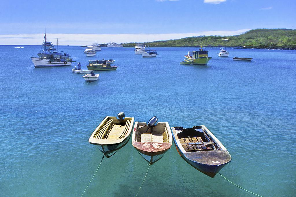 14-Puerto-Ayora-Galapagos-Ecuador