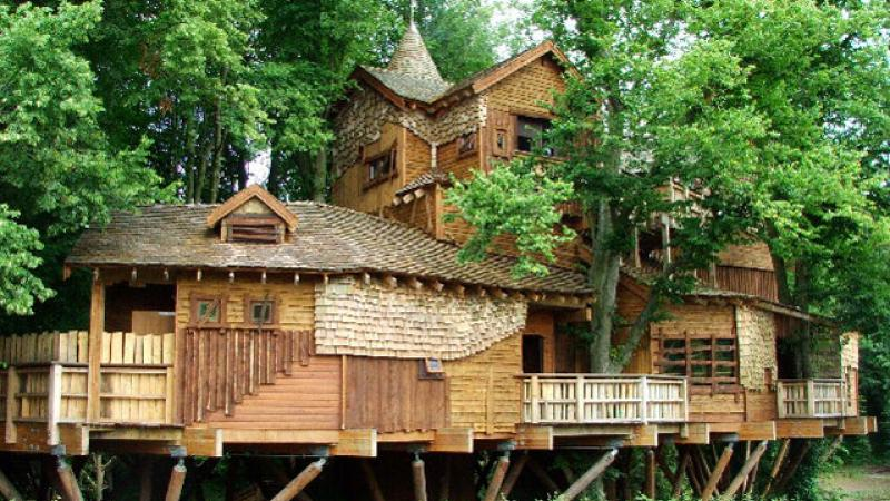 AdventureAdviser_Treehouse