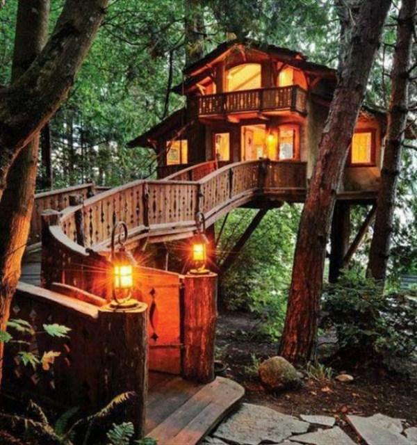 The-Best-Tree-House-13
