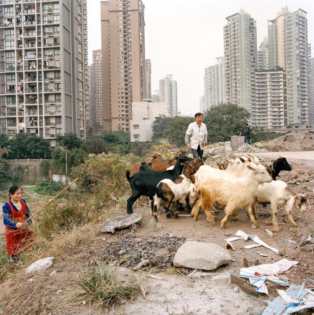 chongqing-china-4