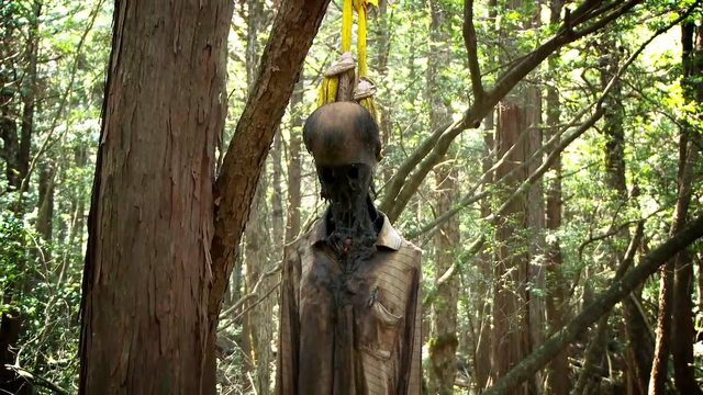 hutan-aokigahara