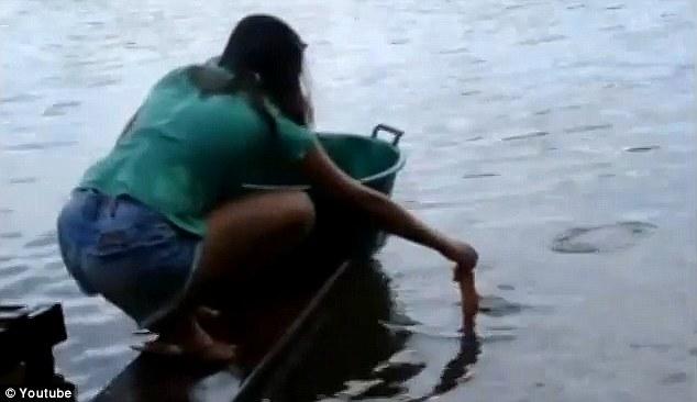 memancing-piranha