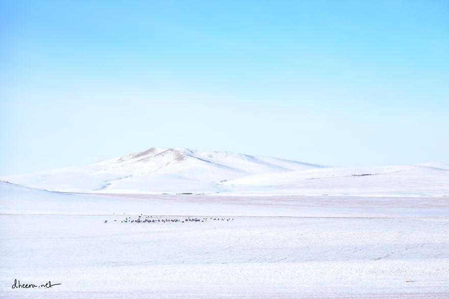 musim-sejuk-di-mongolia-1