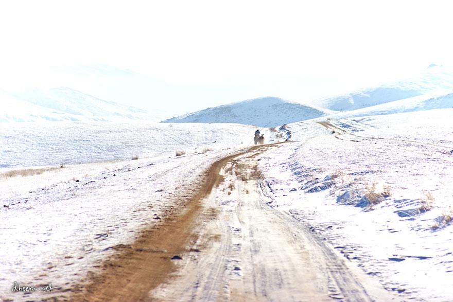 musim-sejuk-di-mongolia-11