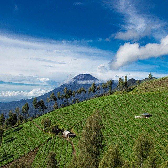 indonesia-132