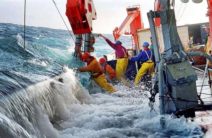 bekerja-di-lautan