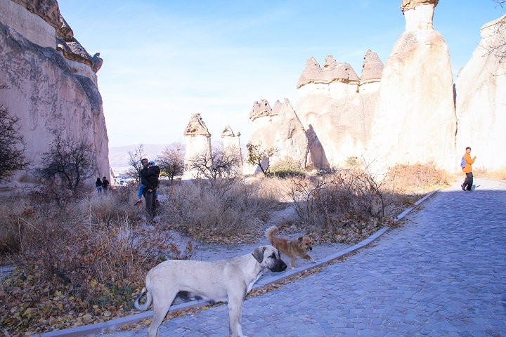 travel-ke-cappadocia-13