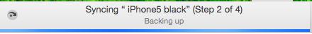 Apple iOS 06