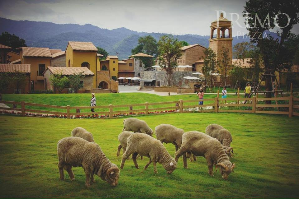 percutian-ke-thailand-5