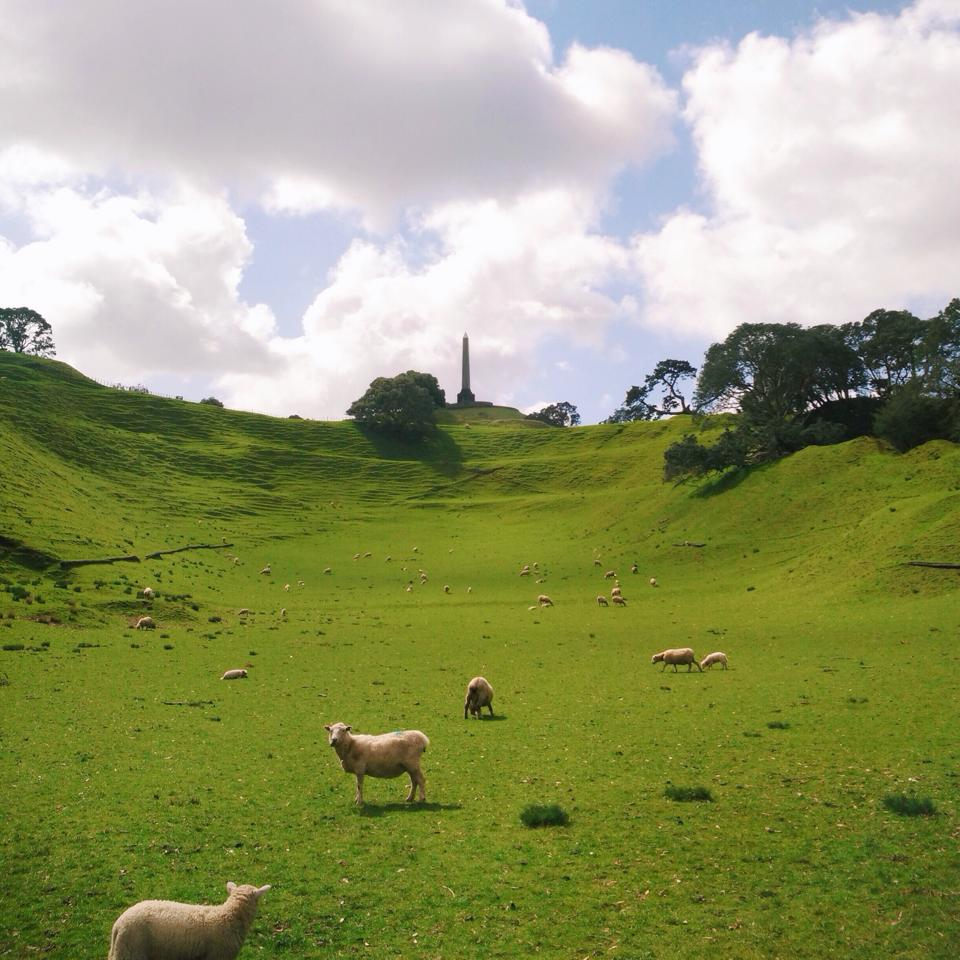 working-holiday-di-new-zealand-4