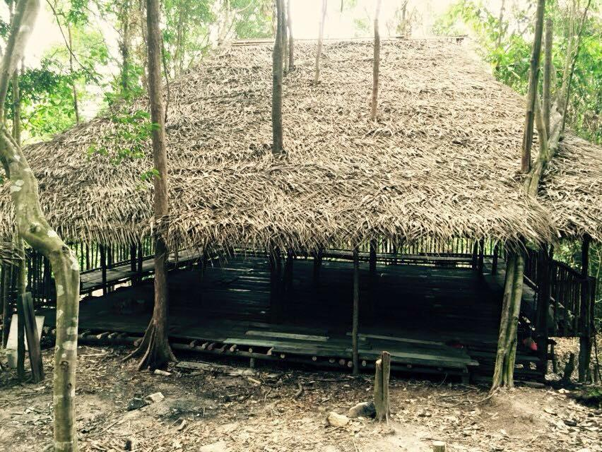 Rainforest Tree House (8)