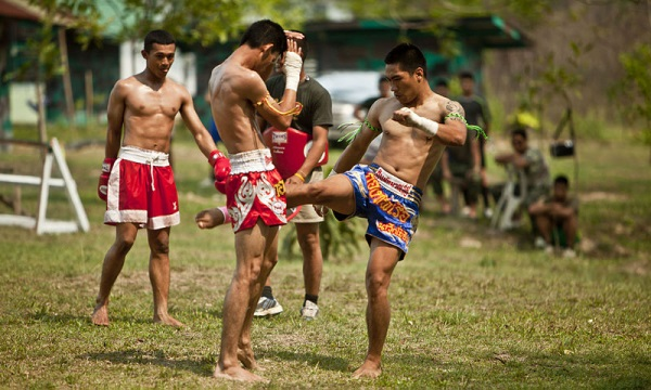 muay-thai-kicks