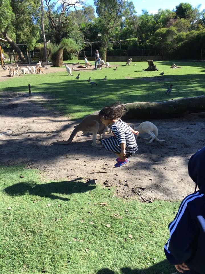 Jumping-jumping like kangaroo