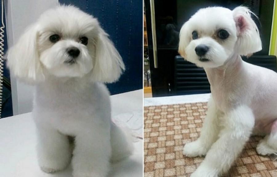 Sebelum dan selepas.