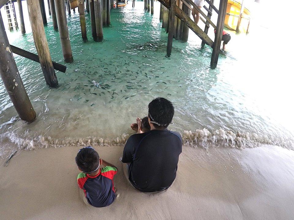 tip-bercuti-di-pulau-rawa-14