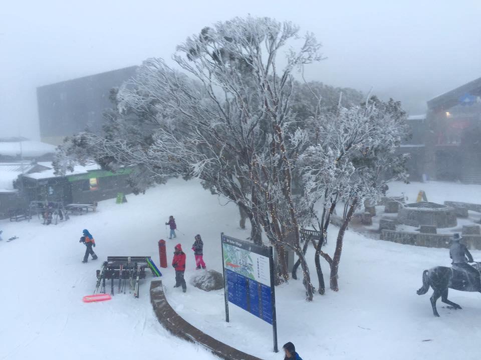 musim-salji-di-australia-2