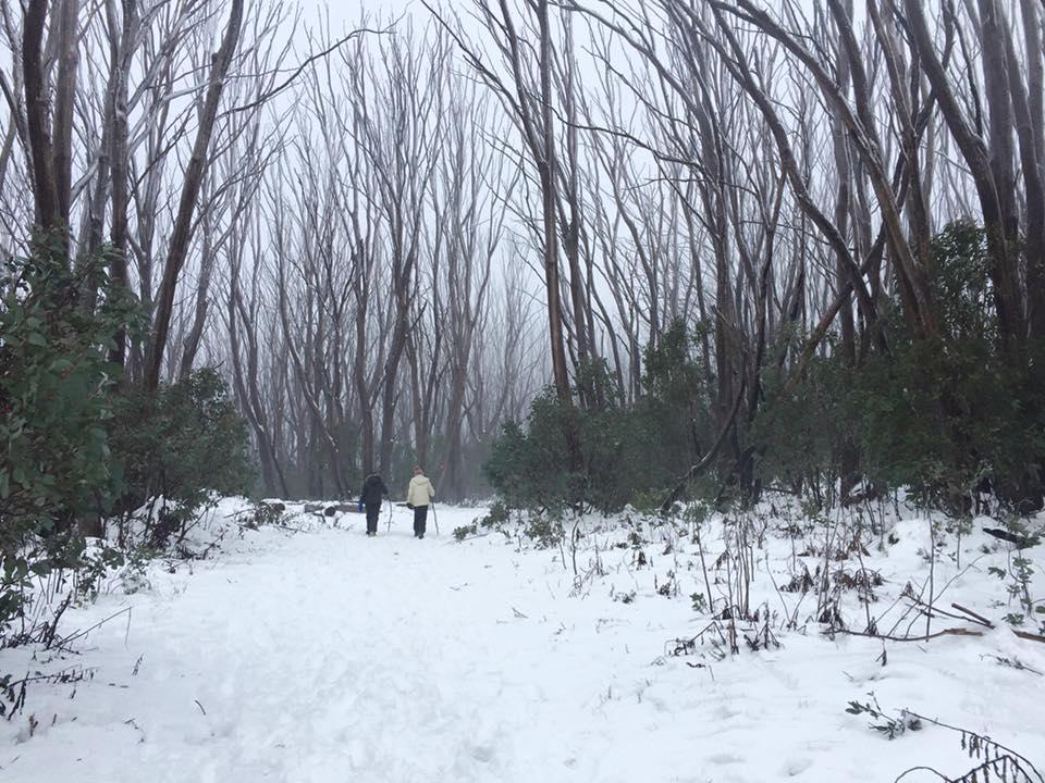 musim-salji-di-australia-6