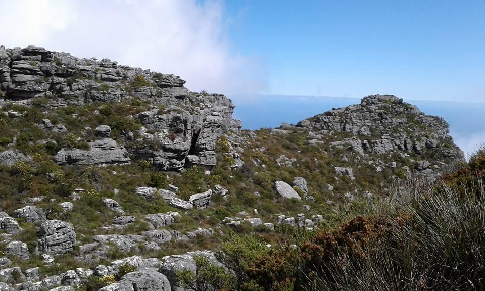 tip-travel-di-afrika-selatan-26