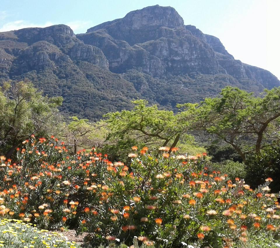 tip-travel-di-afrika-selatan-9