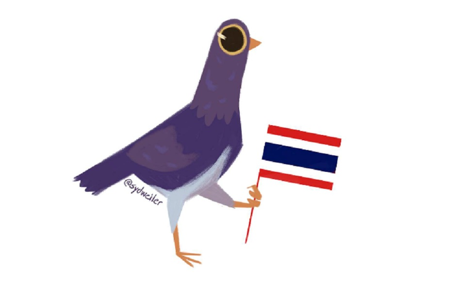 trash-dove-thai-hili