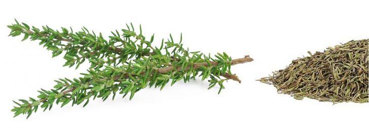 thyme e1488860549251 - 7 Herba Itali Yg Anda Patut Kenali Sebelum Guna Utk Memasak