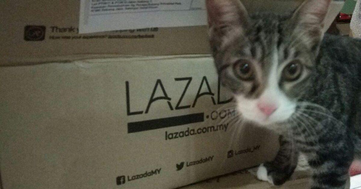 taobao-lazada