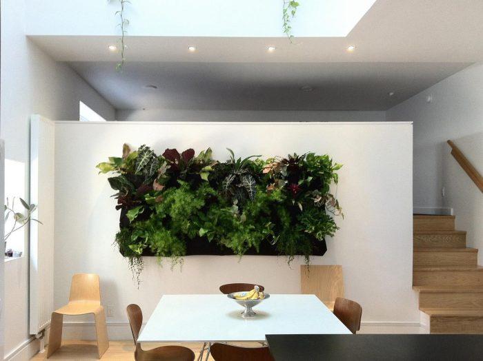 dining room garden 4