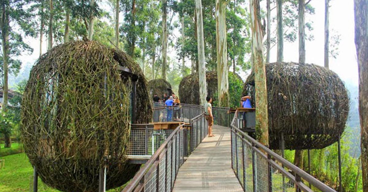 dusun-bambu-bird-nest