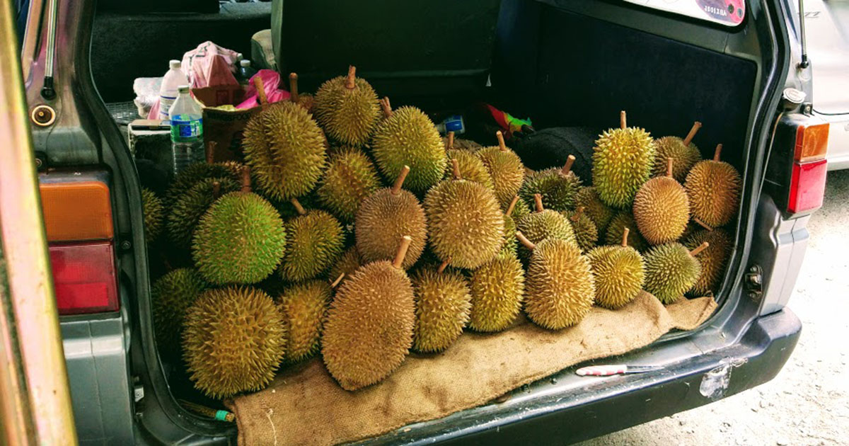 durian-featured