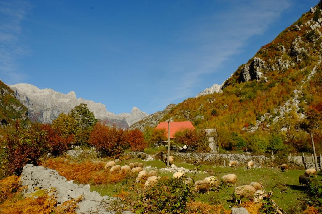 tip-mendaki-albanian-alps-25