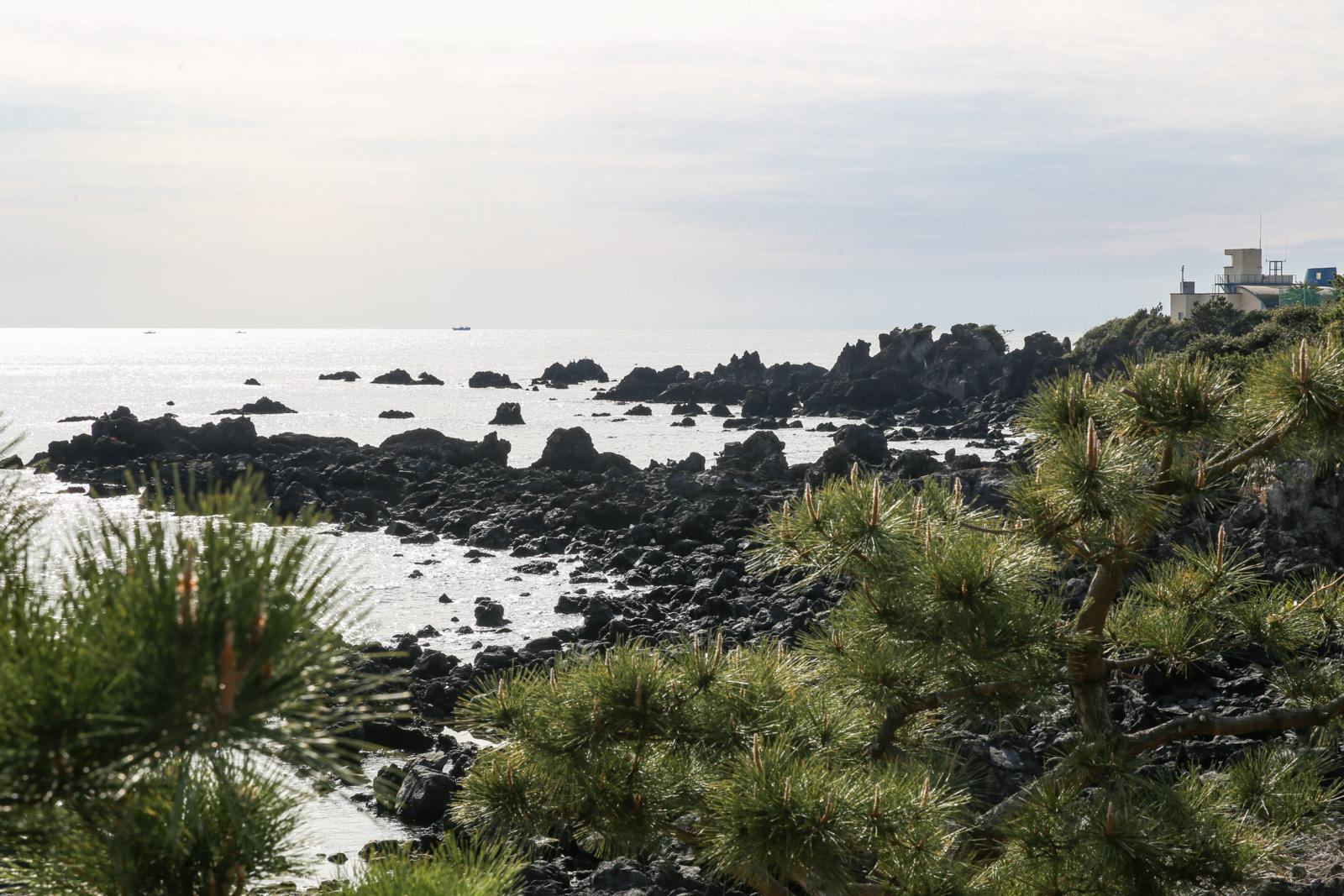 6 Sebab Anda WAJIB Masukkan Pulau Jeju Dalam List Percutian Anda!