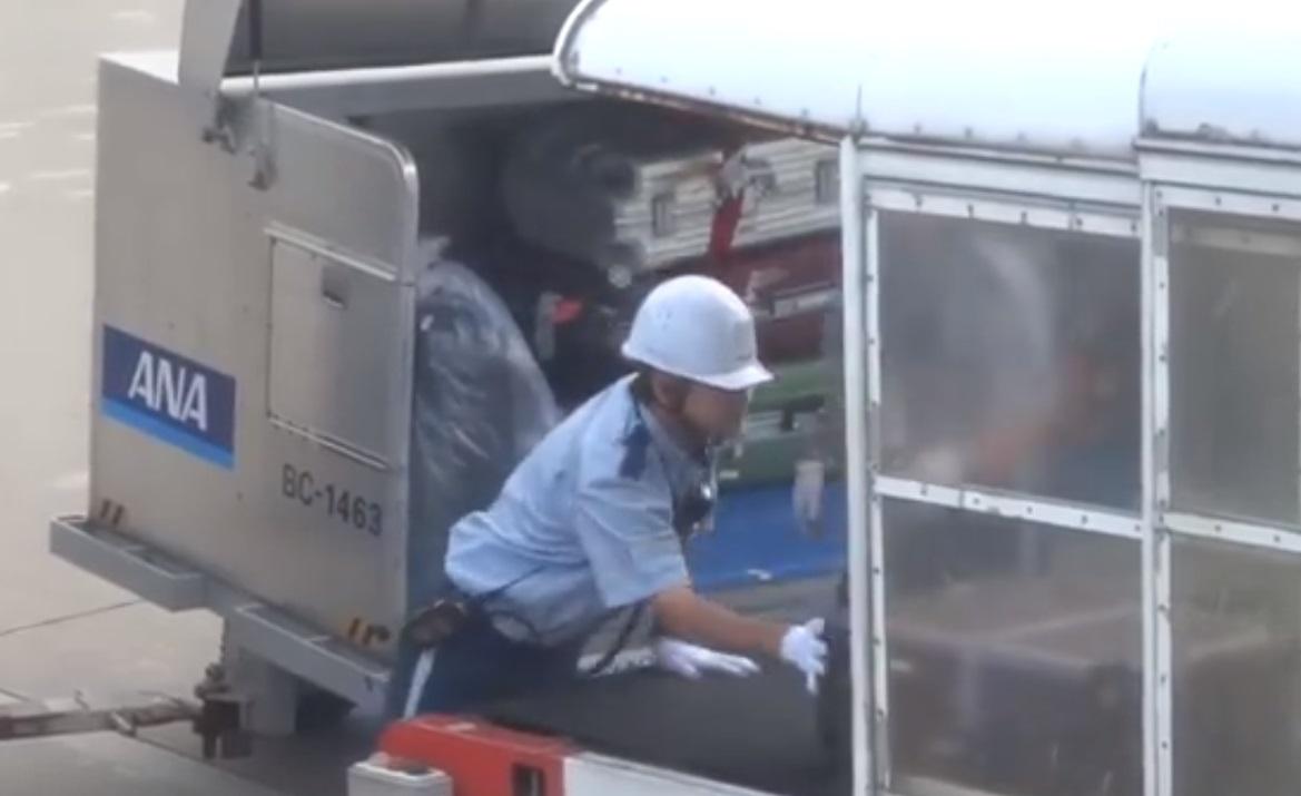 Japan yo