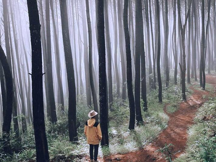 14 Tempat Menarik Untuk Dilawati Di Indonesia