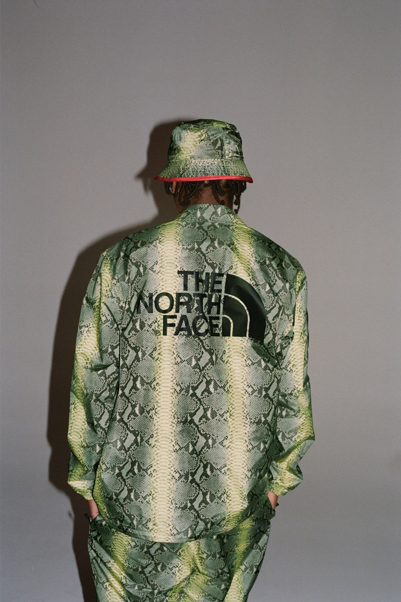 supreme-snake-north-face-01-800×1200