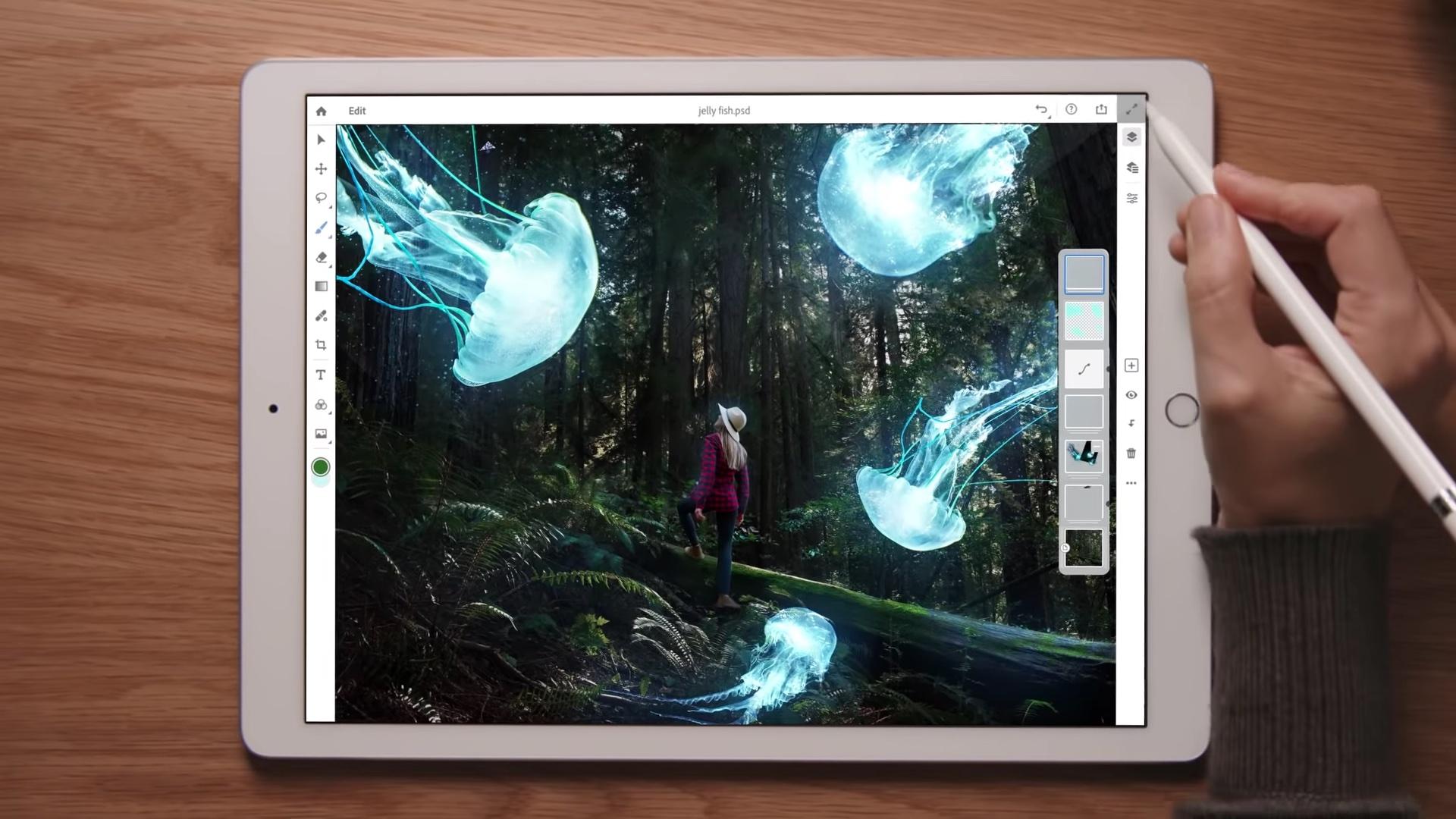 Adobe Ipad