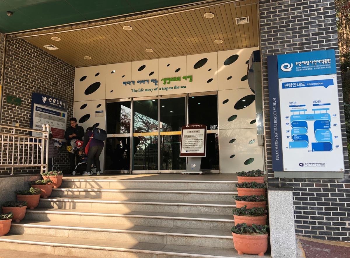 Busan Fish Museum