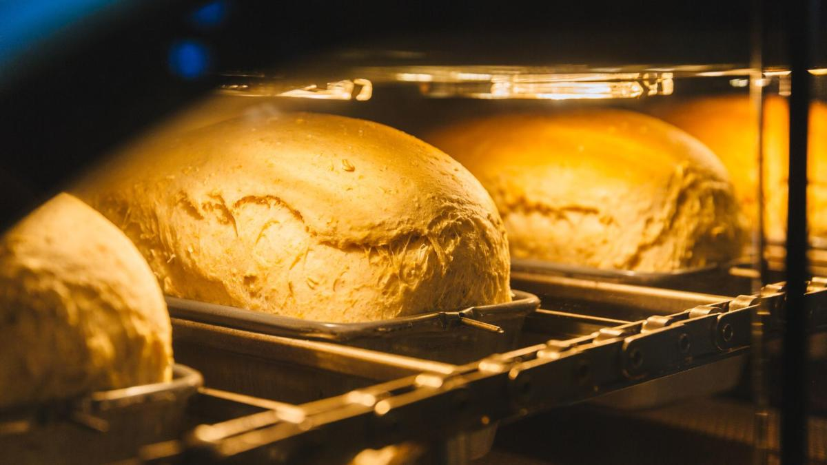 wilkinson-bread-bot-product-photos-9