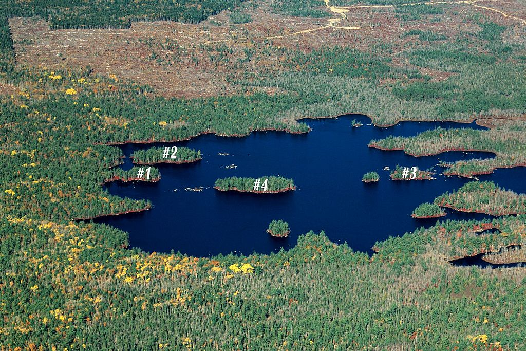 csm_sheep_lake_islands_002_481baf1f1d