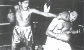 boxinglabulaib